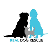 Real Dog Rescue Logo